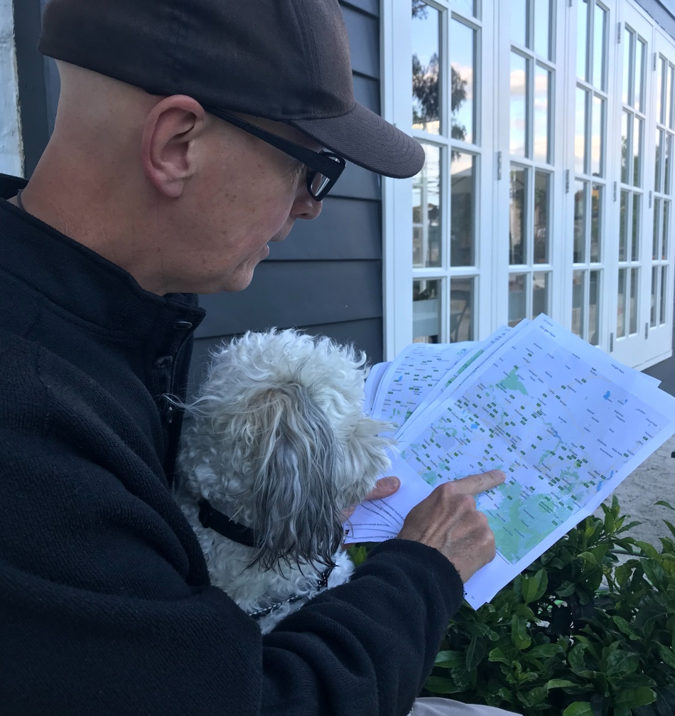 Juno and I consult an actual map.